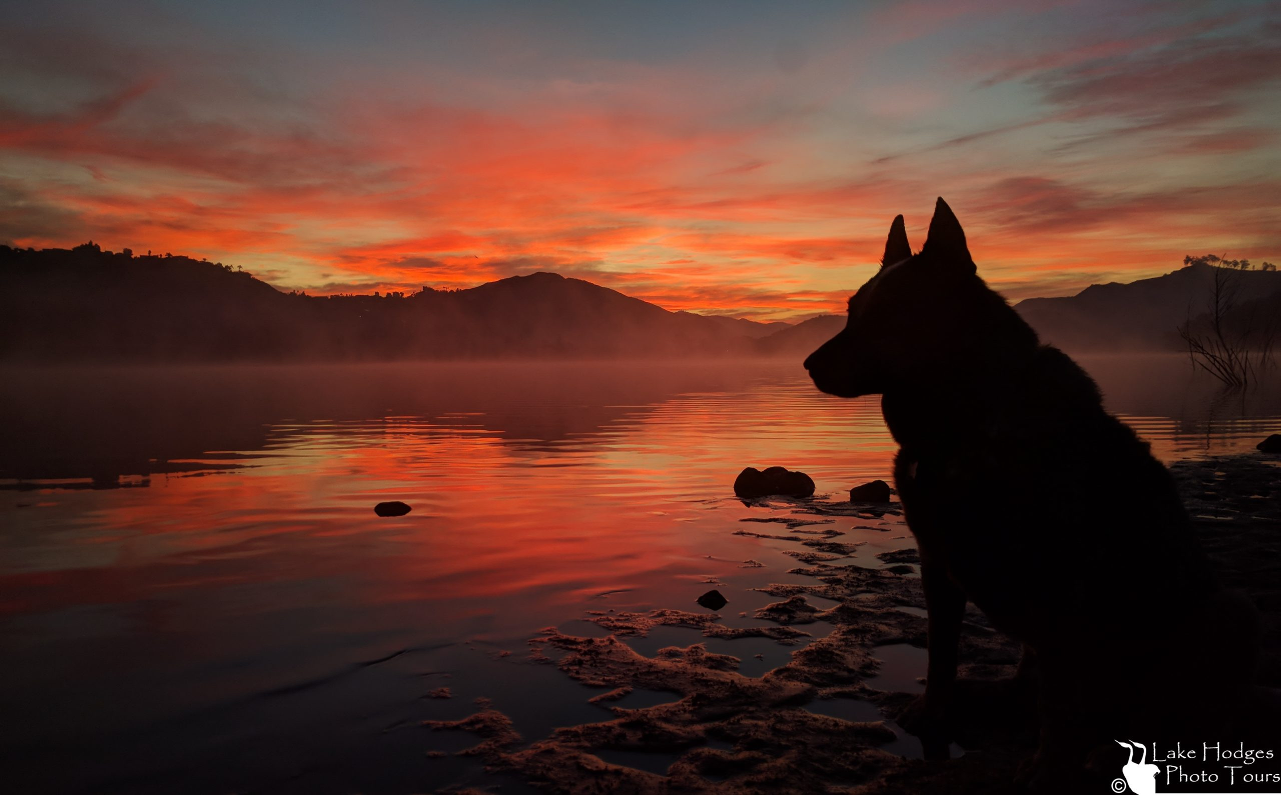 Angus sunrise at Lake Hodges Photo Tours.